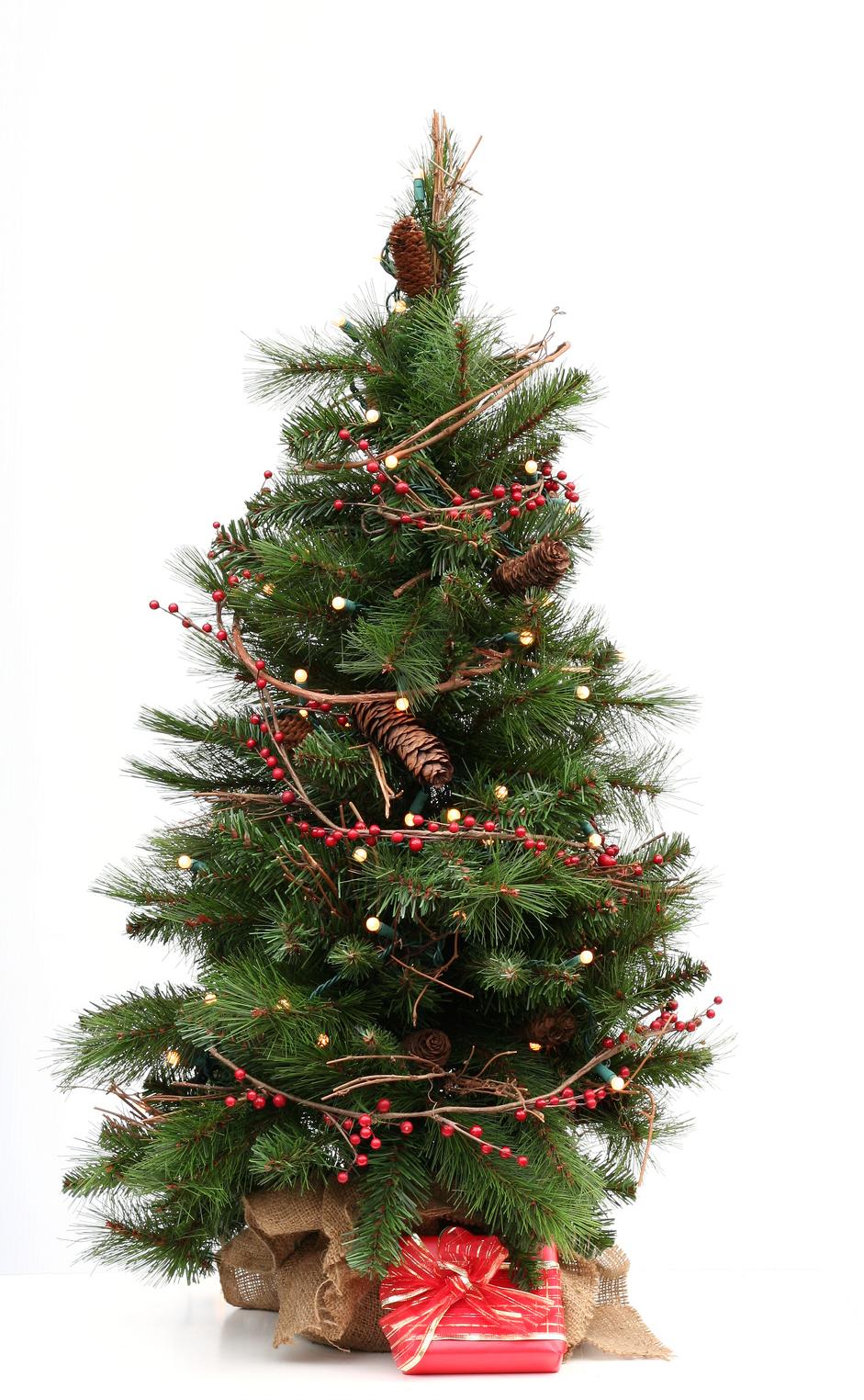 Weihnachtsfeiern von Riegel Events